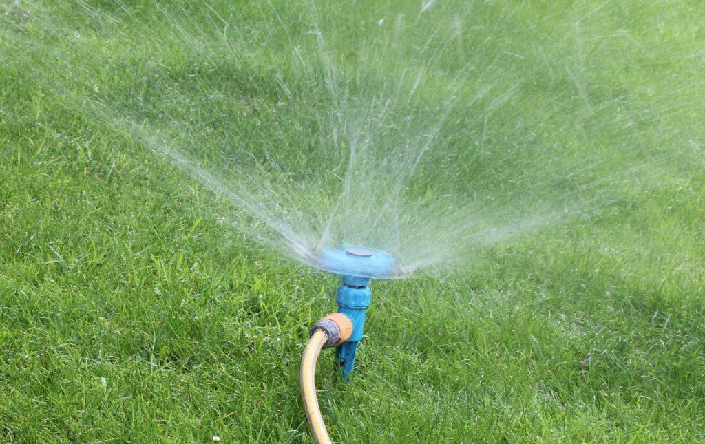 watering-schedule